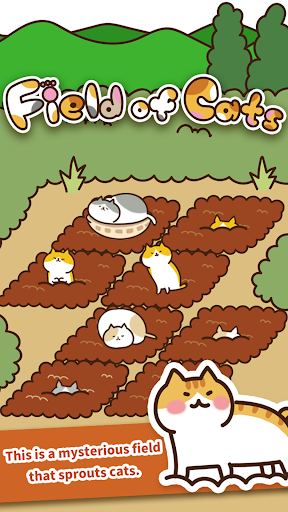 Field of Cats