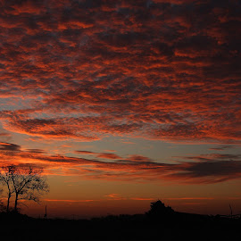 Sunrise Over Bentonvile by Rusty Wood - Landscapes Sunsets & Sunrises ( red, sunrises, nature, sunrise, morning, arkansas, mood factory, color, lighting, moods, colorful, light, bulbs, mood-lites,  )