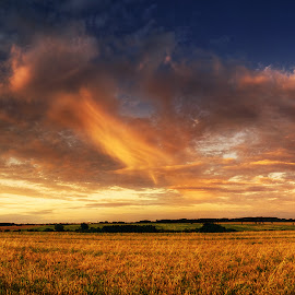 Hungarian skies XCV. by Zsolt Zsigmond - Landscapes Prairies, Meadows & Fields ( clouds, field, sky, sunset, landscape, panorama )