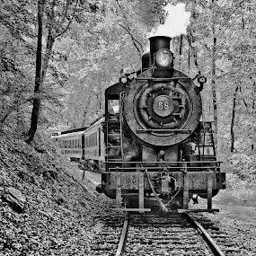Old 58 by Ann J. Sagel - Transportation Trains ( steam engine, b&w, train,  )