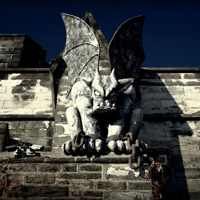 The Devil ! by Abhay Sharma - Buildings & Architecture Statues & Monuments