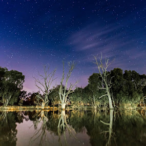 Wimmera River, Horsham. Australia by Lynton Brown - Landscapes Waterscapes ( lynton brown )