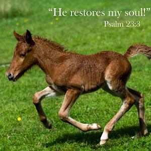 he restores my soul.jpg