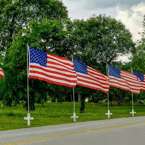 Memorial Lane by Karen Carter Goforth - Public Holidays July 4th ( memorial, flags, veterans, street,  )