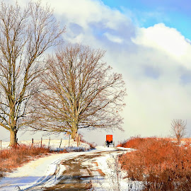 Cold Ride by Denise Guthery - Landscapes Weather ( amish, buggy, horse, pennsylvania, country )