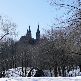 Holy Hill by Kathy Kehl - Landscapes Forests ( hills, hill, hollly, holy, holy hill )