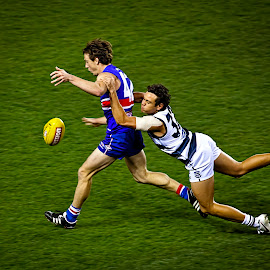 The Tackle by Janette Anderson - Sports & Fitness Australian rules football ( geelong, western-bulldogs, football, uniform, sport, tackle, aussie-rules, tackling, afl, australian football,  )