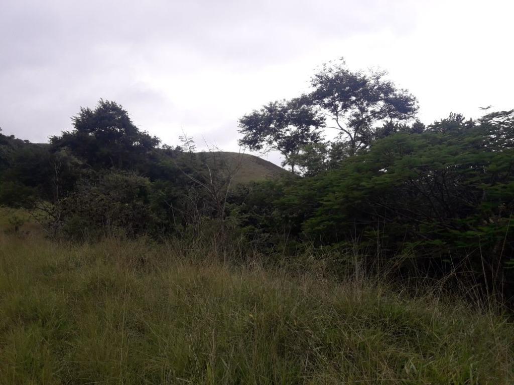 Fazenda / Sítio à venda em Werneck, Paraíba do Sul - RJ - Foto 4