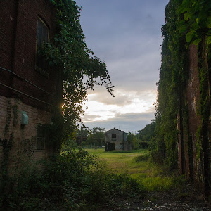 abandonedalley2.jpg