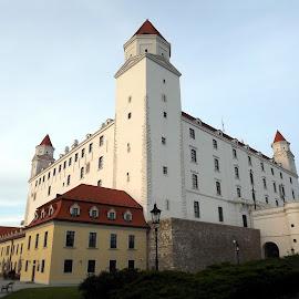 Bratislava Castle (Hrad) by Dražen Komadina - Buildings & Architecture Public & Historical ( bratislava castle (hrad) )