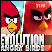 Tips Angry Birds Evolution