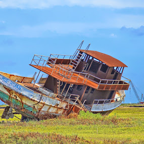 Stranded by Patti Reddoch - Transportation Boats