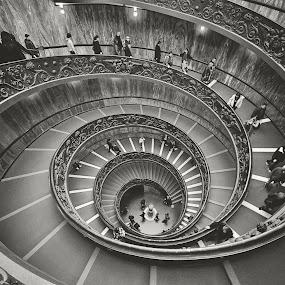 Bramante Staircase (Vatican Museum) by Gabriel Tocu - Black & White Buildings & Architecture ( building, stairs, black and white, rome, vatican museum, black & white, staircase, bw, architectural, bramante staircase, architecture, vatican )
