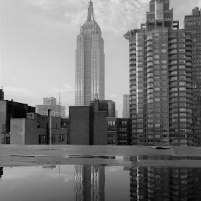 Empire State Building  by VAM Photography - Buildings & Architecture Office Buildings & Hotels ( b&w, exterior, nyc, building, architecture )