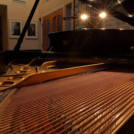 Piano in lights by Scott Knight - Artistic Objects Musical Instruments ( canon, lights, music, piano, melody, strings, steinway )