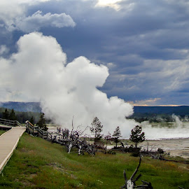 Volcanic Gases at One of the Hot Areas of Yellowstone National Park by Sergey Sibirtsev - Landscapes Travel ( yellowstone, national park, yellowstone national park, usa, gase, hot area,  )
