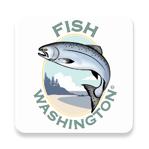 Fish Washington For PC