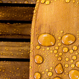 Drops on the Grain by Andrew Brinkman - Artistic Objects Furniture ( water, water resistant, water drops, wood, grain, bubbles, stain, rain )