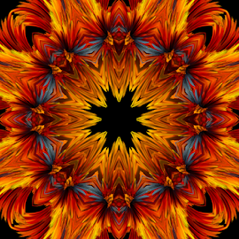 by Kris Pate - Digital Art Abstract ( abstract, creation, pattern, pretty, design )