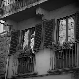 by Martha Irvin - Black & White Buildings & Architecture