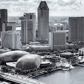 Singapore Skyline in B & W by Welly Agus - City,  Street & Park  Skylines ( pwcbwlandscapes )