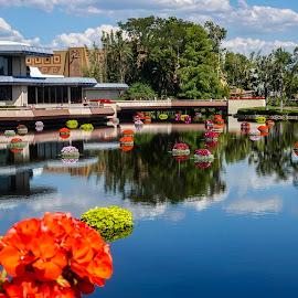 A Beautiful Day in Epcot by Dee Haun - City,  Street & Park  Amusement Parks ( parks, 180507f2241c1e2_16x9bl, orlando, walt disney world, epcot, amusement,  )