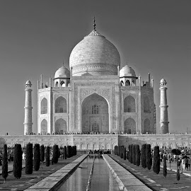 The Taj by Asif Bora - Black & White Buildings & Architecture