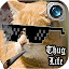 App Thug Life Photo Maker Editor APK for Windows Phone