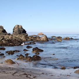 Rocky Oregon Coast by Sherri Woodbridge - Landscapes Beaches ( water, beaches, oregon, rocky, ocean, beach, coast )