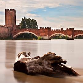 Castle of Verona by Giancarlo Ferraro - Buildings & Architecture Bridges & Suspended Structures ( water, old, brick, bridge, long )
