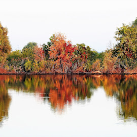 Mirror Image by Kathy Booth - Landscapes Waterscapes ( michigan, reflection, autumn leaves, waterscape, autumn, reflections, autumn colours, autumn colors, autumnscape )