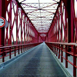 by Ana Paula Filipe - Buildings & Architecture Bridges & Suspended Structures ( structure, red, leading )