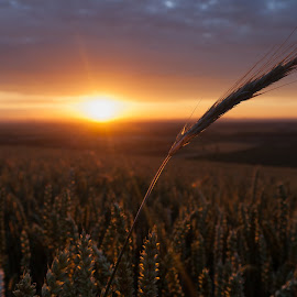 by Thomas Berwein - Landscapes Sunsets & Sunrises