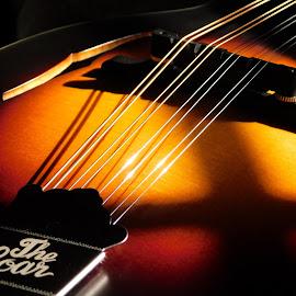 Mandolin by Lisa Chilton - Abstract Macro