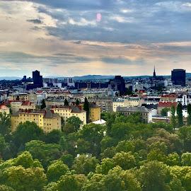 Three Sides of Vienna by Gary Ambessi - City,  Street & Park  Skylines