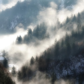 Shiny fog by Alberto Schiavo - Landscapes Mountains & Hills ( fog, trento, dolomites, cles, italy )