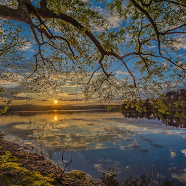 Sunset at Arlie Moore  by Lola Hall - Landscapes Sunsets & Sunrises ( lake degray, lola hall, sunsets, sunset, waterscapes, landscapes, arkansas )