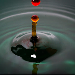 Drop 10 by Hunter Bryant - Novices Only Objects & Still Life ( water, orange, red, dip, blue, drop, blood )