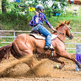 Rounding Third by Sarah Sullivan - Sports & Fitness Other Sports ( #kalvale, #sarahsullivanphotography, #barrelracing, #abha, #qbra )