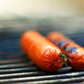 Sharing Dinner by Matthew Bryce - Food & Drink Cooking & Baking ( grill, bee, outdoors, hot, hotdog, cooking )