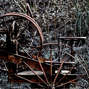 Wheel by Stephanie Seward - Products & Objects Industrial Objects ( industrial, wheel, nature, blue, machine, rust )