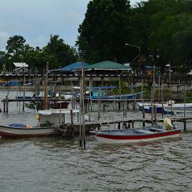 by Maspaun Bolhasan - Landscapes Waterscapes ( nature, kuching, malaysia, landscape, photography )