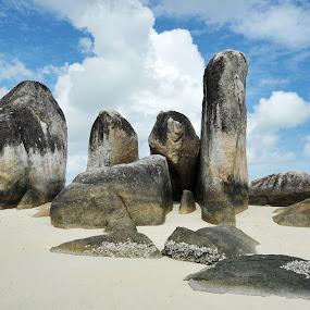 Giant Stone by Jenni Ertanto - Landscapes Beaches ( sand, nature, stone, beach, landscape )