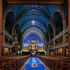 Notre Dame basilica by Bogdan Marin - Buildings & Architecture Places of Worship