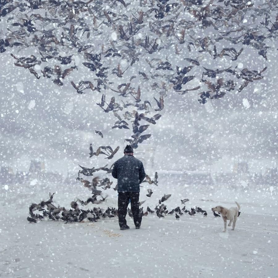 The pigeon feeders by Caras Ionut - Digital Art Things