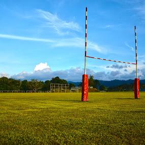 pdg rugby.jpg
