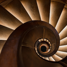 Spiralic by Mario Horvat - Buildings & Architecture Architectural Detail ( lights, wooden, stairs, indoor, round, spiral )