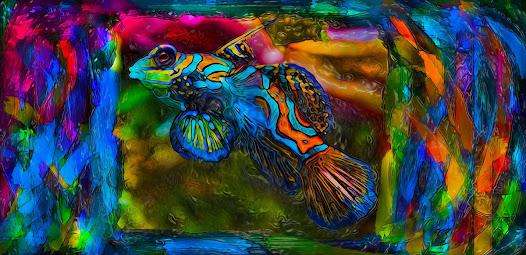 En un océano de colores una corriente me transporta por paisajes marinos miles de peces como rafagas de luz nadan a mi alrededor mis ojos contemplan el contraste de luz y oscuridad del reino submarino