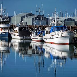 Everett Marina  by Todd Reynolds - Transportation Boats