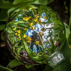 Selfie in the Spring! by Jesus Giraldo - Artistic Objects Other Objects ( reflection, concept, green, colors, art, beauty, yellow, spring, macro, nature, composition, photographer, flowers, garden, man )